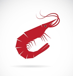 image of an shrimp design vector image vector image