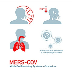 MERS infection vector image