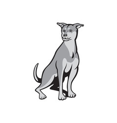 Husky Shar Pei Cross Dog Sitting Cartoon vector image vector image