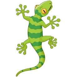Cartoon gecko vector image