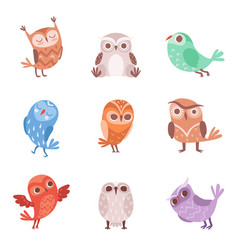 cute cartoon owls set lovely colorful owlets vector image