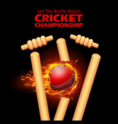 fiery ball breaking the stumps for cricket vector image