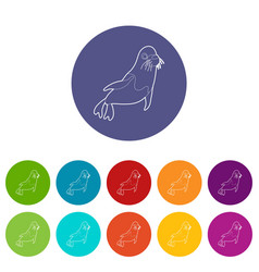 fur seal icons set color vector image