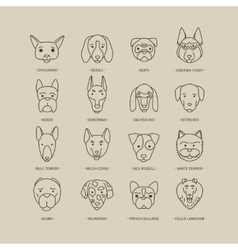 Head of dog and puppy set vector