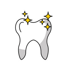 human tooth with stars vector image