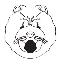 Isolated chow chow avatar vector