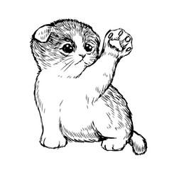 Little cat hand drawn vector