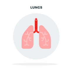 lungs a man in a gray circle flat isolated vector image