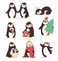 Penguin set characters vector