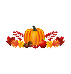 pumpkin apple acorn cherries and foliage leaves vector image