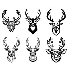 set of deer head on white background design vector image