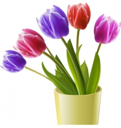 tulips in a yellow vase vector image