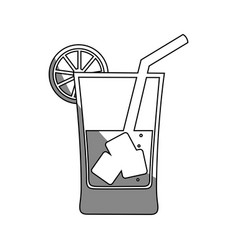 Drink with ice cubes vector