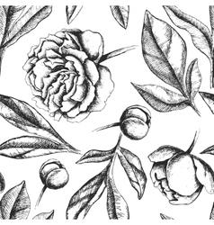 Vintage elegant pattern with peony flowers vector image