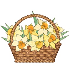 Basket flowers vector