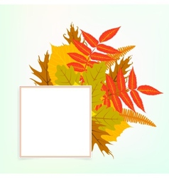 card with autumn decor vector image