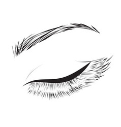 Female eye drawing vector