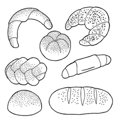 Set of baked breads vector image