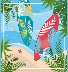 surfboards with starfish and shell with leaves vector image