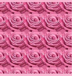 seamless pattern of pink lavender garden rose vector image vector image