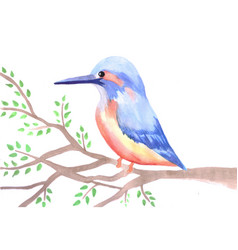 Cute kingfisher on a tree branch vector