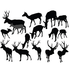 deer collection - vector image