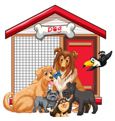 Dog cage with animal group cartoon isolated vector