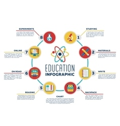 Education infographic chart with options vector