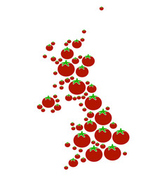 United kingdom map collage of tomato vector