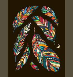 feather collection for your design vector image