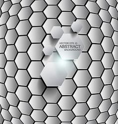 hexagon background 2 vector image