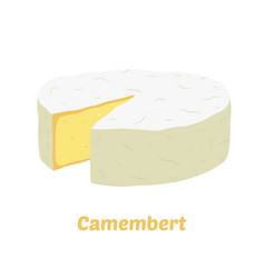 camembert cheese block cartoon flat style vector image