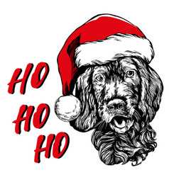 Dog in santa stocking hat santa claus christmas vector