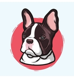 Domestic dog french bulldog vector