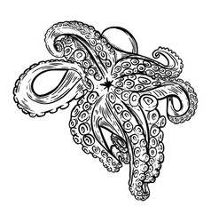 Hand drawn octopus seafood design element for vector