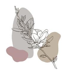 sketch spring flowers magnolia vector image
