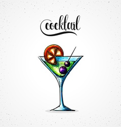 Stylish colored hipster fashion cocktail handmade vector image