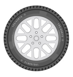 car wheel isolated on a white background vector image