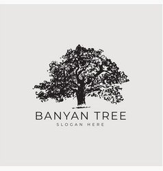 banyan tree logo concept vector image