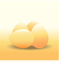 eggs chicken egg vector image