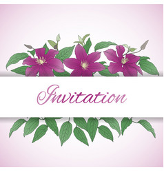 floral background with clematis flowers vector image