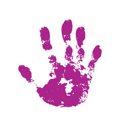 hand paint print isolated white background pink vector image