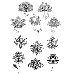 Persian and indian paisley flowers set vector