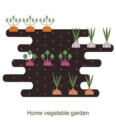 Vegetables garden background vector