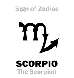 Astrology sign zodiac scorpio the scorpion vector