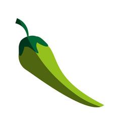 Chili food flat shadow vector