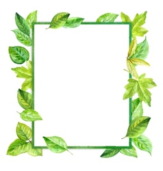square frame made of various leaves in watercolor vector image