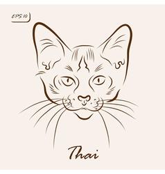 Thai cat vector