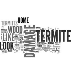 What does termite damage look like text word vector