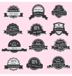 12 Premium Quality labels vector image